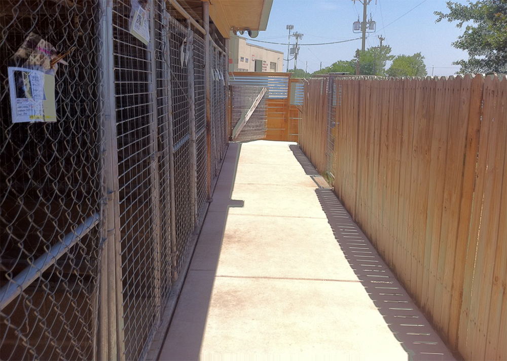 outdoor kennel side